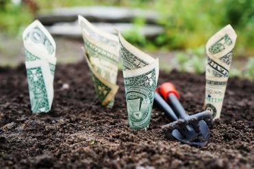 money-1604921_1280.jpg